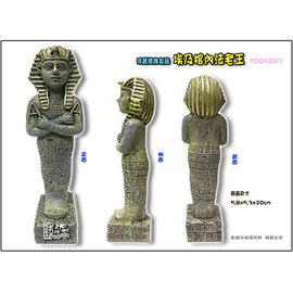 ~魚舖子~造景飾品^^^^ 埃及棺內法老王∼飾品中的 超漂亮、再次降