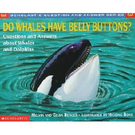 Do Whales Have Belly Buttons
