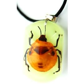 夜光螢光──昆蟲物語~項鏈~琥珀昆蟲墜子的項鏈
