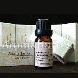 ~AromaHarvest 天然•有機•純精油~Eucalyptus Blue Gum 藍