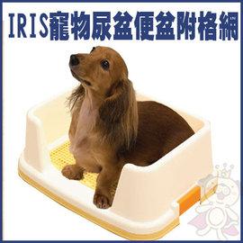 ~GOLD~IRIS防側漏TRT~500寵物尿盆便盆附格網^(防咬網墊^)