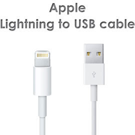 【原廠傳輸線】Apple iPhone 5/5S/5C/SE 6/6S/6 Plus/6S Plus/iPod Touch5/nano7 MD818FE/A 傳輸充電線/Lightning 對 USB 連接線