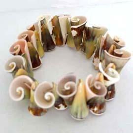 貝殼手環 ~ 竹節色螺旋狀貝殼彈性手環