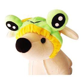 變裝 ~青蛙王子頭飾  ~特殊風趣的可愛 ~ S號 ~只有一組