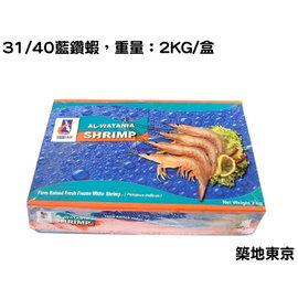 ~築地東京~~藍鑽蝦,規格:31 40,重量:2KG 盒~