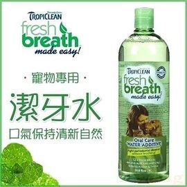 ~GOLD~美國fresh breath鮮呼吸~寵物口腔潔牙水~消除犬貓口臭 請混合飲水飲