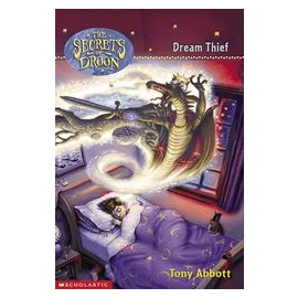 Secrets Of Droon #17: Dream Thief