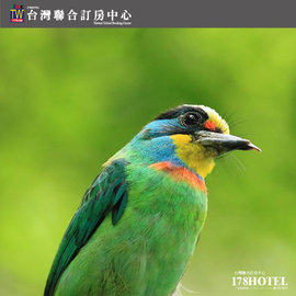 【小朋友最愛草泥馬】新竹綠世界生態農場 入園 每張299元