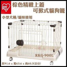 ~GOLD~ IRIS~RKG~900L~掀蓋式寵物籠 ~ 92^~64^~60 cm ~