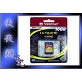 天天網 全新創見 Class 10 SDHC 記憶卡 16G 16GB存儲卡 公司貨 (220004-10)