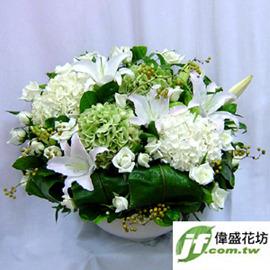 雅砌  盆花