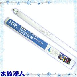 【水族達人】TOP《T5高效燈管(海水藍).25000K(39W)》超明亮!