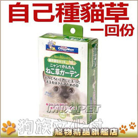 ~ Cattyman.自己種貓草一回份盒裝,附培養土,簡單又健康^(1152 1169^)