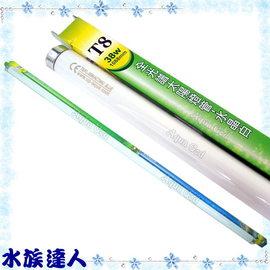 【水族達人】雅柏UP《T8深海藍燈管.38W》知名品牌、大眾價格!