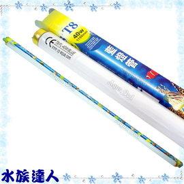 【水族達人】雅柏UP《T8藍燈管.40W》知名品牌、大眾價格!