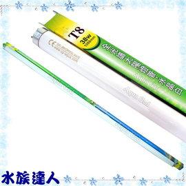 【水族達人】雅柏UP《T8全光譜太陽燈管.水晶白.38W》知名品牌、大眾價格!