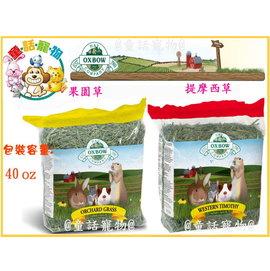 美國OXBOW果園草~鮮綠提摩西草40oz 兔兔 天竺鼠