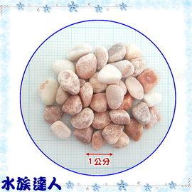 【水族達人】《珊瑚紅石1kg散裝.1.2分約(7mm)》造景、美觀、大方!