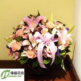 娇豔 盆花
