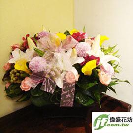 缤纷春日 盆花