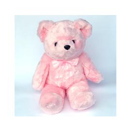 coolfamily~粉彩泰迪熊~22吋