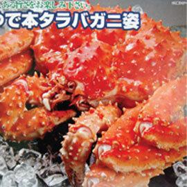 ~瘋海鮮~㊣活㊣~超鮮拔北海道帝王蟹^(鱈場蟹^)~1.3~1.5kg每週產地直送鮮度超激