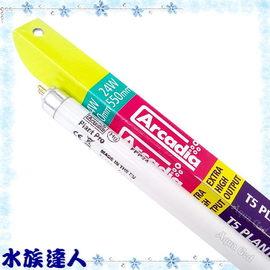 【水族達人】阿卡迪亞Arcadia《T5水草太陽燈管.24W》品質超好!超明亮!