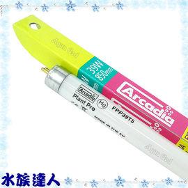 【水族達人】阿卡迪亞Arcadia《T5水草太陽燈管.39W》品質超好!超明亮!