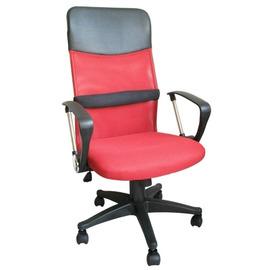 高級[D型扶手超透氣網布高背椅+靠腰墊](紅色)電腦椅/主管椅DM109DP-RD加贈坐墊*1