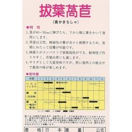 【日本進口蔬菜種子】拔葉萵苣,韓國烤肉就是用這個品種。
