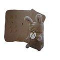 ◆可愛安妮兔 毯^(棕^)◆ 品牌 四季涼被 擺飾 午安枕