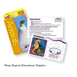 ~全彩印刷 T~23017~Animals Pocket Flash Cards 學習動物