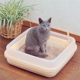 IRIS~雙層~果凍色貓砂盆CA~400N_小