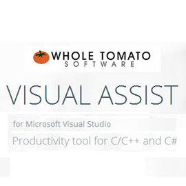 Visual Assist Standard 版 ~ 單機版  下載