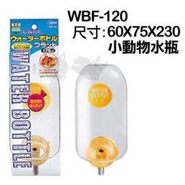 ~GOLD~~06090015~ Marukan~兔用扁平式水瓶~天竺鼠蜜袋鼯WBF~12