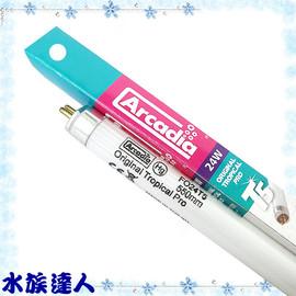 【水族達人】【T5燈管】阿卡迪亞Arcadia《T5新超亮淡水鹵素燈管.24W》超明亮!