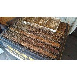 蜂巢龍眼蜜700g