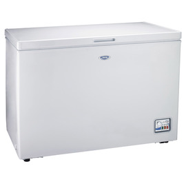 TECO 東元 單門300L 冷藏 /冷凍櫃 RL3088W **可刷卡!免運費**