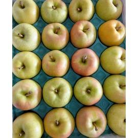 青森^(TOKI^)青蘋果^(18粒 盒^)