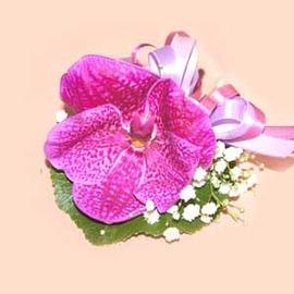 【花現幸福】♥萬代蘭胸花200元♥婚禮用品 胸花 主婚人 證婚人