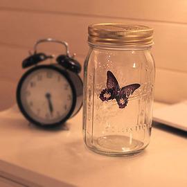 天天網超蝶 聲控蝴蝶 超仿真蝴蝶 會飛的瓶中蝶 愛情蝴蝶罐 四款 不思議蝴蝶^(26017