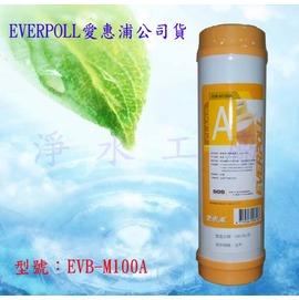 【淨水工廠】EVERPOLL愛惠浦一般標準型..採用美國道爾樹脂濾心/濾芯EVB-M100A/EVBM100A
