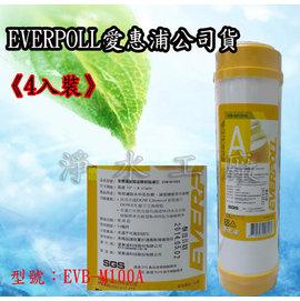【淨水工廠】《4支裝》《免運費》EVERPOLL愛惠浦公司貨一般標準型美國道爾樹脂濾心EVB-M100A/EVBM100A
