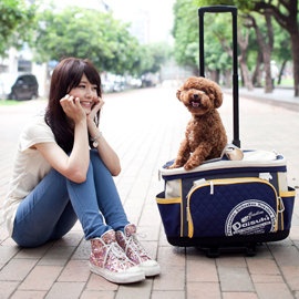 ~寵我的最愛~多 側背小型寵物袋 含拉桿車  寵物袋 寵物外出包 寵物提袋 肩背 側背 支