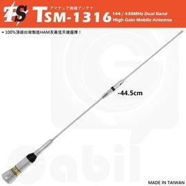 TS TSM~1316 雙頻天線 車用天線 超寬頻 低損失 轎車 休旅車可裝 全長44.5