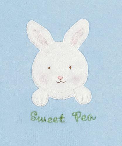 小兔简笔画彩色图片