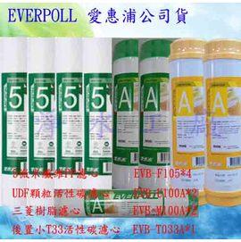【淨水工廠】《免運費》《9支裝》《送餘氯測試液》EVERPOLL愛惠浦一年份濾心EVB-F105*4/EVB-U100A*2/EVB-M100A*2 /EVB-T033A*1