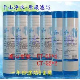 【淨水工廠】《6支裝》《免運費》《送PH酸鹼測試液》千山淨水CHANSON原廠濾心CT-G1*4/CT-G2*2..同CTG10/CTG20