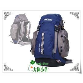 大林小草~【G137】犀牛RHINO  37公升透氣彈性鋼網架背包 戶外休閒背包 可裝水袋