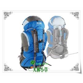 大林小草~【G160】犀牛RHINO  60公升易調背負系統背包 重裝登山背包 背包客背包